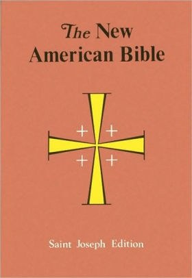 catholic bible study guide for beginners