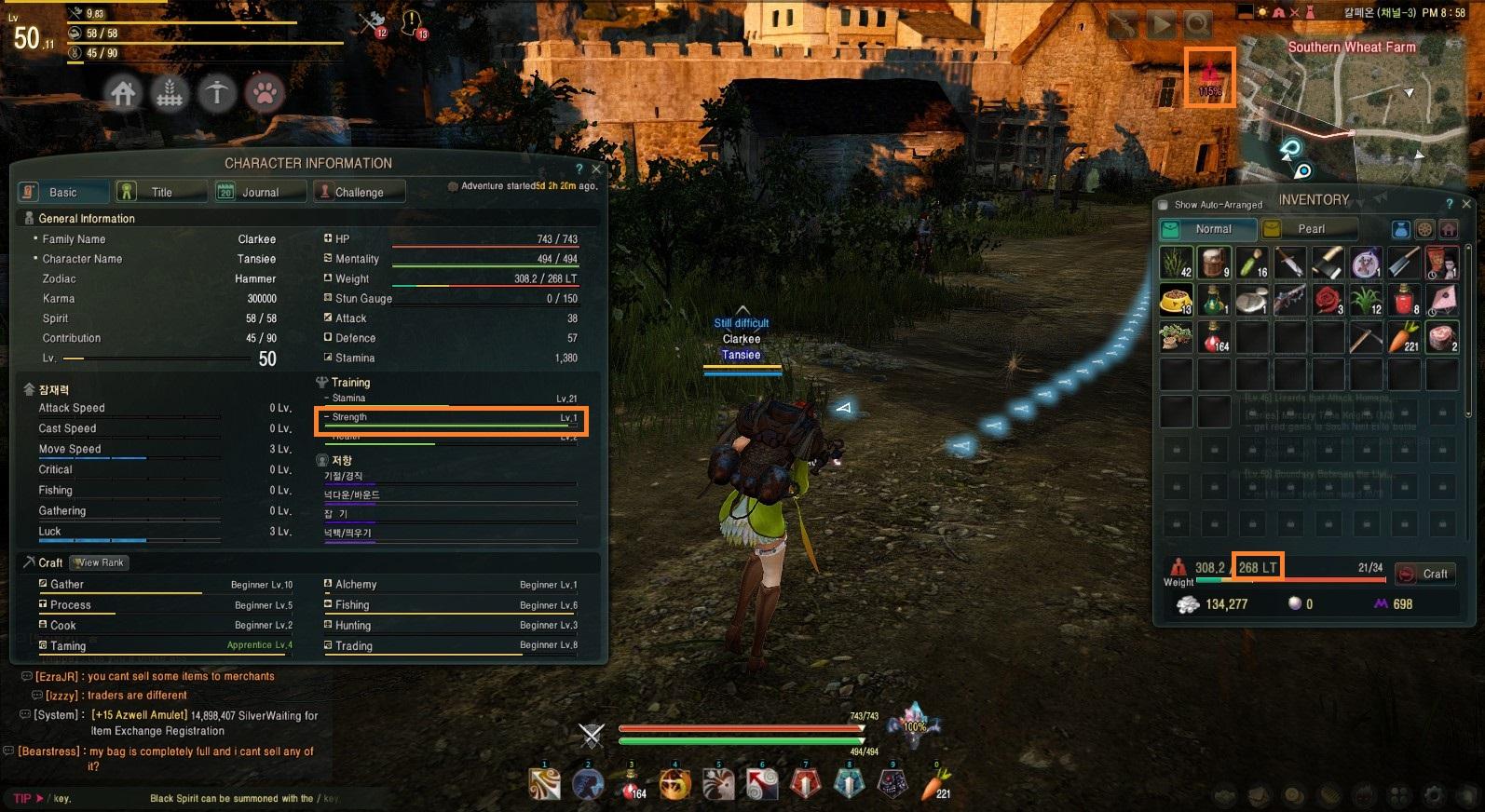 black desert online fast leveling guide