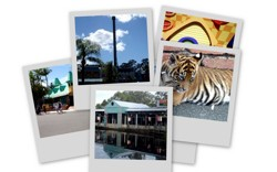 good food guide surfers paradise
