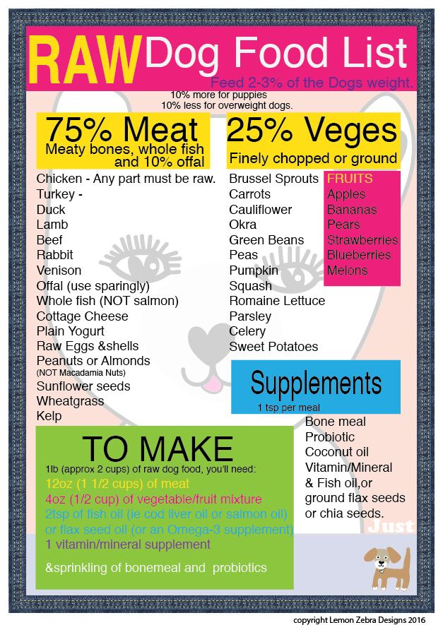 raw food diet dogs feeding guide