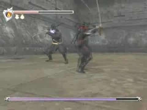 ninja gaiden 2 strategy guide