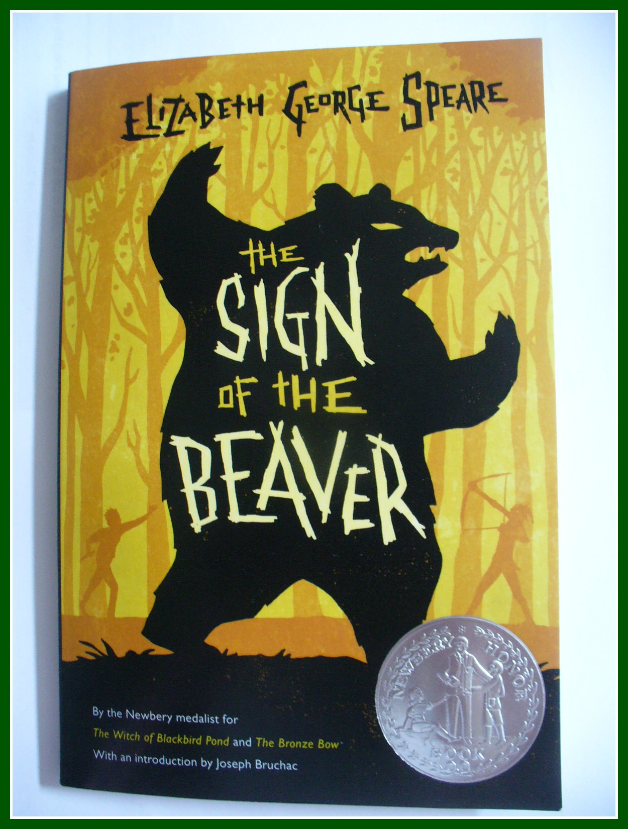 sign of the beaver study guide